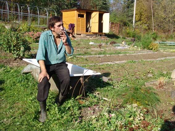 Осенние работы в саду садовые работы