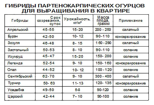Температура воздуха для выращивания огурцов 885