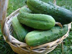 Субстрат для выращивания овощей: МИНЕРАЛЬНАЯ ВАТА