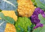 Разноцветная цветная капуста: необычные сорта