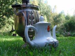 Какой чай вреден?