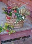 Как засушить растения для художественных изделий