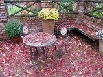 Краски осени в саду